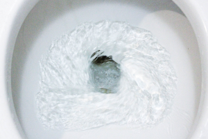 Raised toilet water levels